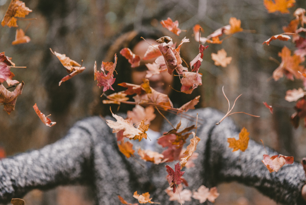 Must have features for fall email campaigns