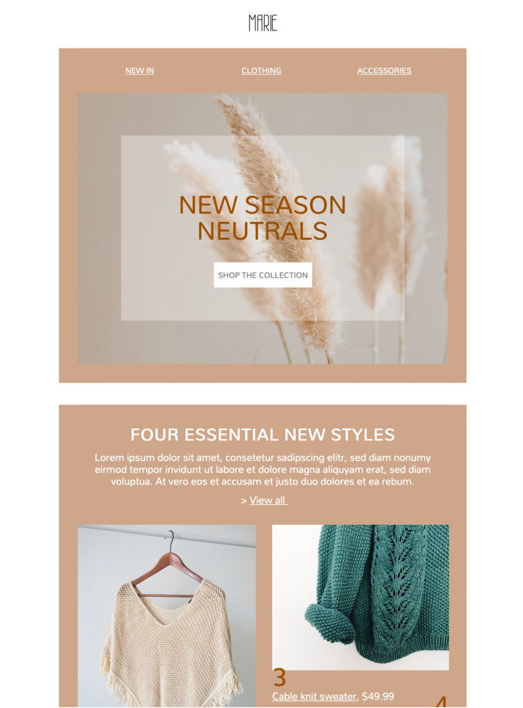 html email template for fashion brands