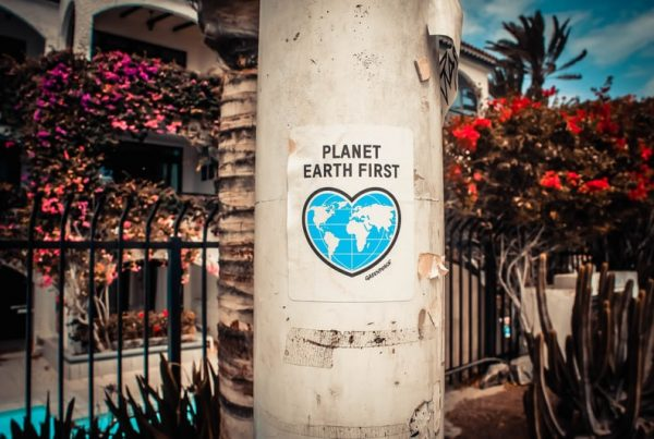 planet earth poster by Greenpeace