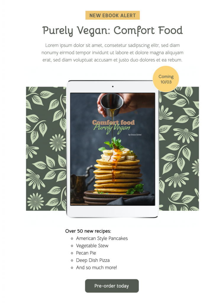 ebook promotion email template for book launch